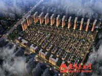 香河大爱城实景图
