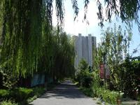 安联优悦城小区图