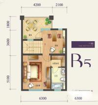 b5-3户型5室3厅5卫1厨268.00㎡