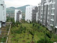 佛光山景温泉花园实景图