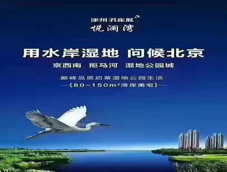 涿州悦澜湾效果图