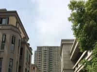 万科未来城实景图